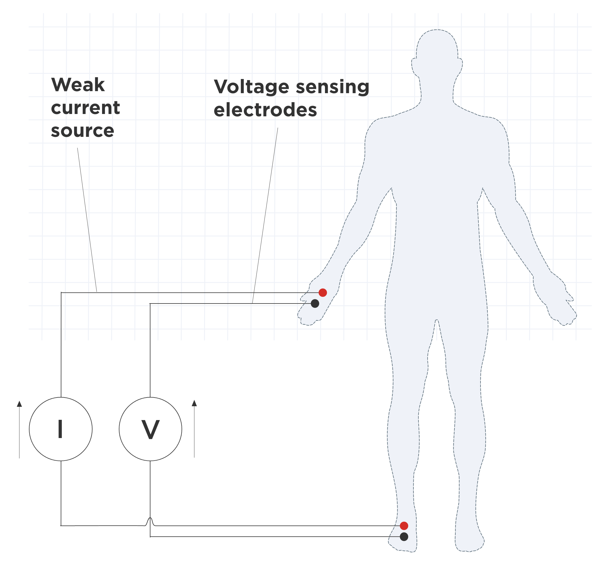 four-electrode configuration for BIA measurement