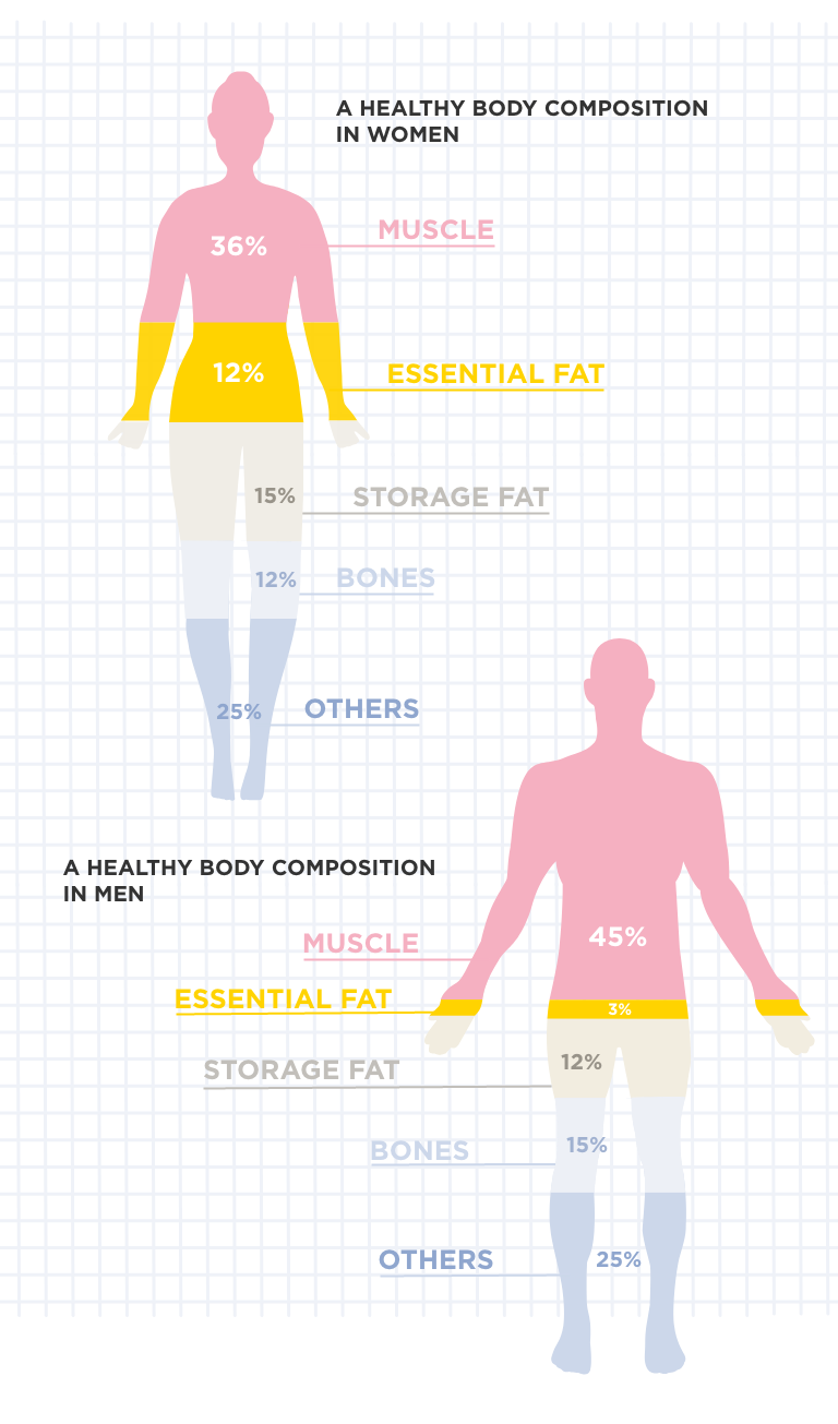 A healthy body composition